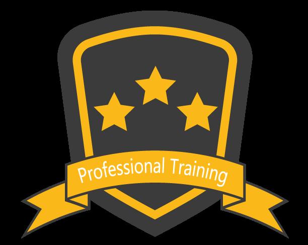 Icon: Professional Training